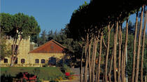 Private Tour - Wine Tasting Tour - Day Trip from Beirut, Beirut, Private Sightseeing Tours