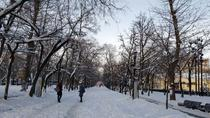 The Boulevard Ring: A Walk Through the Ages, Moscow, Cultural Tours