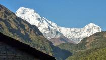 15 - Days Khopra Danda Trek, Kathmandu, Hiking & Camping