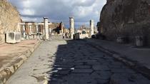 Day Tour of Pompeii Herculaneum and wine tasting, Positano, Wine Tasting & Winery Tours