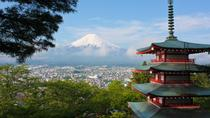 1 Day Private Mt Fuji Tour (Charter) - English Speaking Driver, Tokyo, Day Trips
