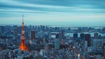 1 Day Tokyo Private Sightseeing Tour - English Speaking Driver, Tokyo, Private Sightseeing Tours