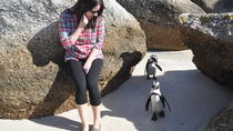 Cape of Good Hope-Peninsula Tour-Penguins-Ostrich-Seals-Baboons-Cape Point, Cape Town, Cultural ...