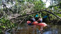 Adventure Guided PaddleBoard or Kayak Eco Tour for Two people one double kayak, Naples, 4WD, ATV & ...