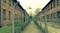 Auschwitz-Birkenau:Complete Guided Tour from with Private Transportation, Krakow, Private ...