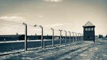 Auschwitz Birkenau: Complete Guided Tour with Private Transportation, Krakow, Private Sightseeing ...