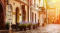 Sightseeing 1, 2 oder 3 Historische Bezirke in Krakau: Komplette Private Tour, Krakow, Private Sightseeing Tours