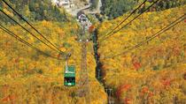 Autumn Sounkyo Private Day Tour (Up to 15 Passengers), Sapporo, Cultural Tours