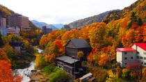 Jozankei and Sapporo Private Day Tour (Up to 8 Passengers), Sapporo, Cultural Tours