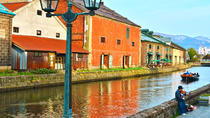 Otaru and Yoichi Private Day Tour (Up to 13 Passengers), Sapporo, Day Trips