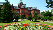 Sapporo Private Day Tour (Up to 15 Passengers), Sapporo, Day Trips