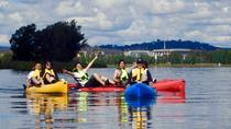 Island Hopping with the Waterbirds Small-Group Pedal Kayak Tour in Canberra, キャンベラ