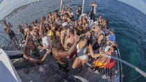 ONLY IBIZA BOAT PARTY, Ibiza, Day Trips
