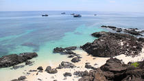 3-Day Ly Son Island and Quy Nhon Tour from Hoi An, Hoi An, Multi-day Tours