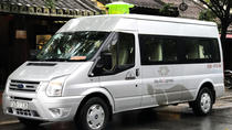 Car rental with Driver: Visit My Son & Da Nang from Hoi An, Hoi An, Airport & Ground Transfers