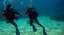 Full-day Scuba Diving at Cham Island from Hoi An, Hoi An, Day Trips