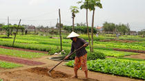 Half-Day Farming Experience from Hoi An, Hoi An, null