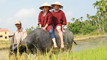 Half-Day Rice Paddy Experience from Hoi An, Hoi An, Cultural Tours