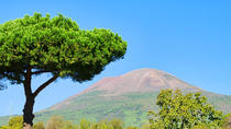 Mt Vesuvius Tour from Sorrento, Sorrento