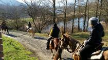Horseback riding in Lunigiana, La Spezia, Horseback Riding