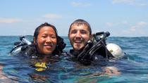 PADI Discover Scuba Diving DSD - Try-Dive Experience!, Kota Kinabalu, Scuba Diving