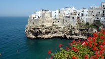Private Tour: Polignano a Mare City and Boat Tour, Puglia, Private Sightseeing Tours