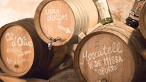 Food and Wine Tasting Experience in Mallorca, Mallorca, Wine Tasting & Winery Tours