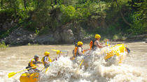 Classic 8-Mile Snake River Whitewater, Jackson Hole, White Water Rafting & Float Trips