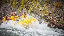 Snake River Half Day with Dutch Oven Cookout, Jackson Hole, White Water Rafting & Float Trips