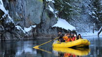 Wilderness & Eagle Viewing Float, Squamish, Day Trips