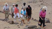 Namib Desert Dunes 2 Days Camping Sossuslei Tour, Windhoek, Hiking & Camping