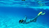 Snorkel & Relax Cruise, Puerto Plata, Snorkeling
