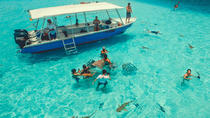 Moorea Shore Excursion: Boat Tour including Snorkeling & Day at the beach, Moorea
