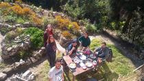 Cook and Dine in a Forest Garden with a Local Family in Darjeeling, Darjeeling
