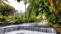 Perfect Combination: Canopy & Tabacon Hot Springs, San Jose, Day Cruises