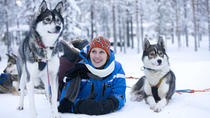 Arctic Circle Family Day, Rovaniemi, Day Trips