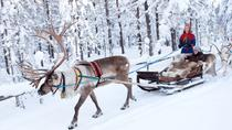 Finnish Lapland in 7 Days, Rovaniemi, Cultural Tours
