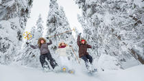 Lapland Winter Experience, Rovaniemi, Day Trips