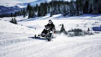 Snowmobile Experience, Rovaniemi, 4WD, ATV & Off-Road Tours