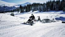Snowmobiles and Huskies, Rovaniemi, Cultural Tours
