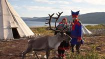 Visit a Sami Reindeer Farm in the Summer, Rovaniemi, 4WD, ATV & Off-Road Tours