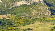 Sicilian Countryside Day Trip from Cefalu Including Lunch