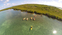Kayak, Snorkel and Beach, St John's, Kayaking & Canoeing