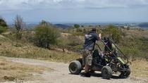 Saint Marys Safari, St John's, 4WD, ATV & Off-Road Tours