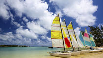 Full-Day Bénitiers Island & Dolphin Watching Cruise with Lunch, Port Louis, Dolphin & Whale ...