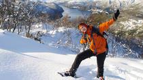 Snowshoeing Day Trip in Bodo, Northern Norway, Bodo, Ski & Snow