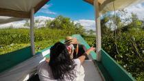 Navagacion to the Amazon River - Iquitos, Iquitos, Day Cruises