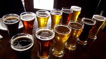 Gdansk: 3-Hour Beer Tasting Trip - New Style of Pub Crawl, Gdansk, Beer & Brewery Tours