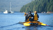 Ward Cove Wildlife Seacycle Tour, Ketchikan, Ziplines