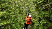 Douglas Island Zipline Tour from Juneau, Juneau, Ziplines